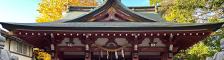 一心泣き相撲 特別協力 越谷香取神社