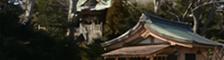 一心泣き相撲 特別協力 白旗神社