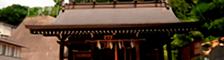 一心泣き相撲 特別協力 杉山神社・横濱水天宮